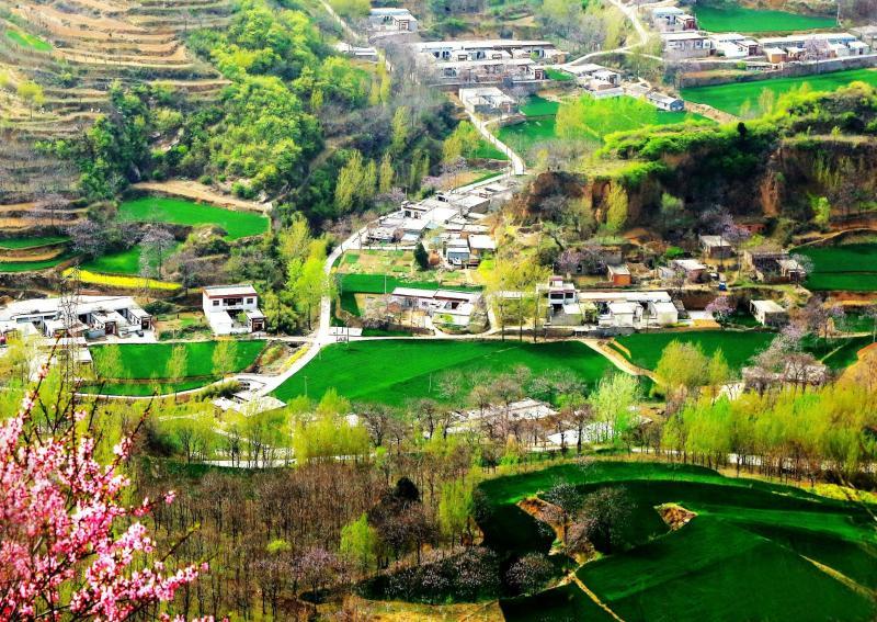 今日鄉(xiang)村(cun)春色好(hao)