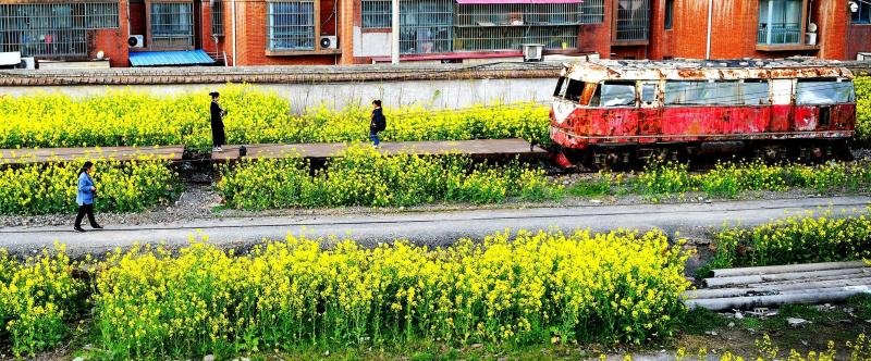鄢陵老街印象